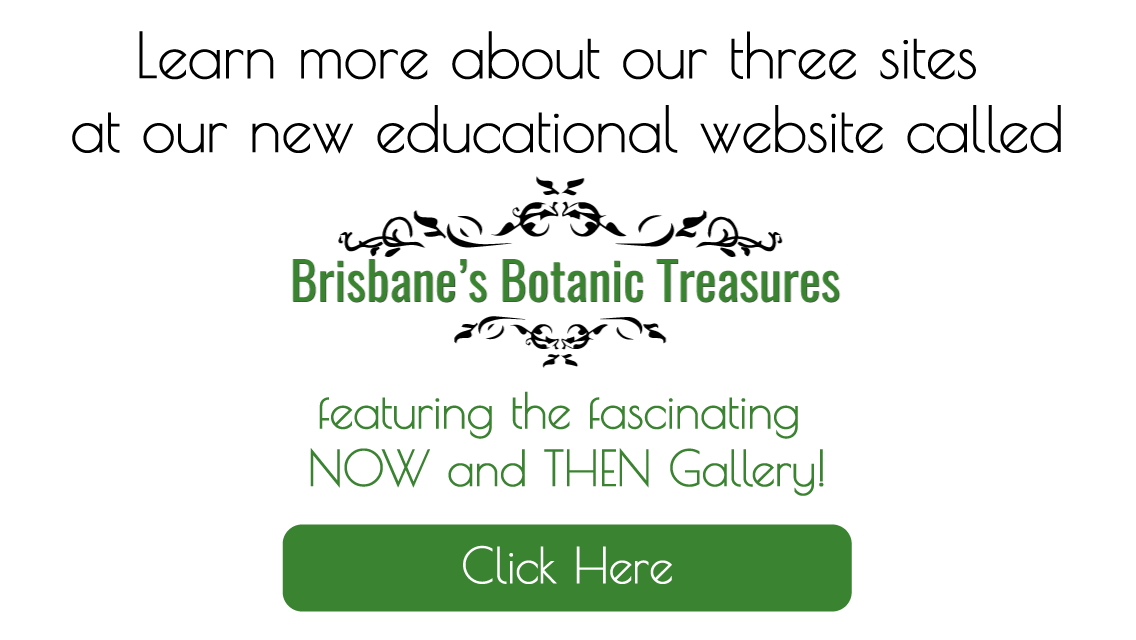 Brisbane Botanic Treasures educational website