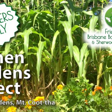 Kitchen Garden Volunteering