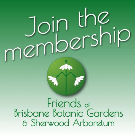 Join the Friends of Brisbane Botanic Gardens and Sherwood Arboretum
