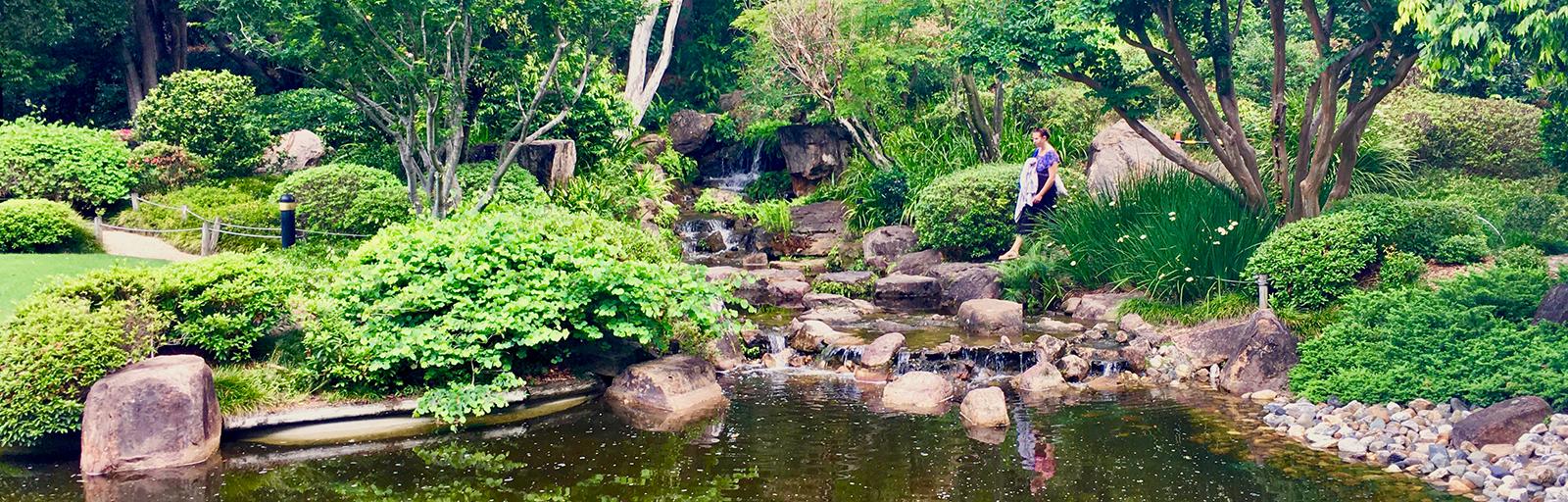 The Association - Friends Geelong Botanic Gardens