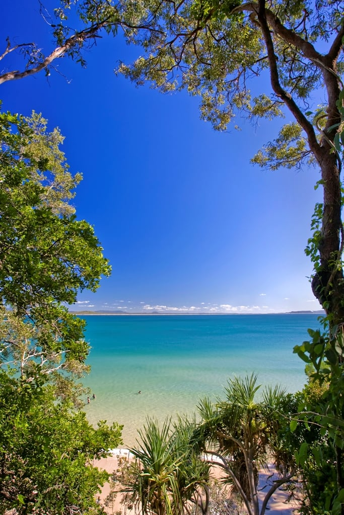 Little Cove Noosa Heads Photo: Tourism Noosa
