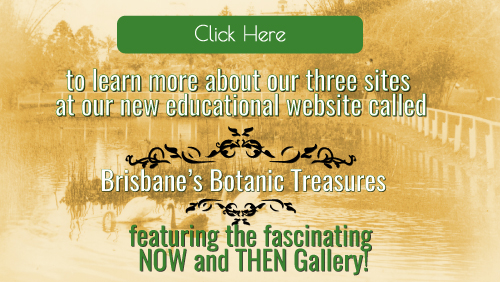 Friends of the Brisbane Botanic Gardens and Sherwood Arboretum History page