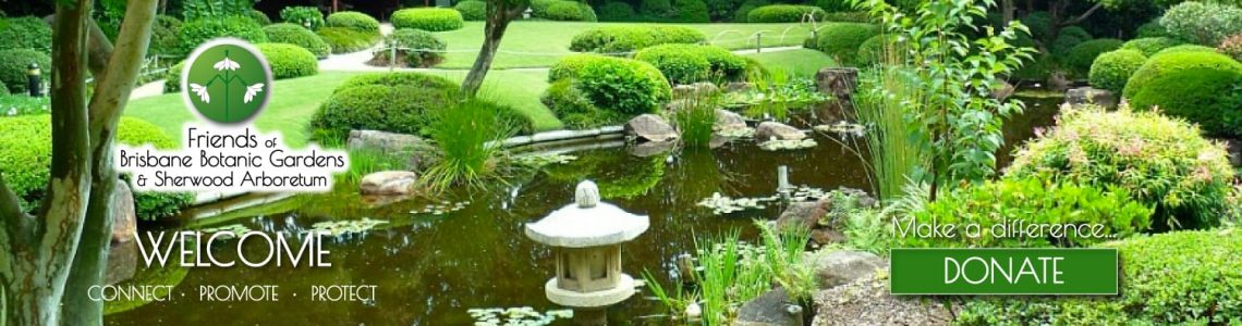 Friends of Brisbane Botanic Gardens & Sherwood Arboretum