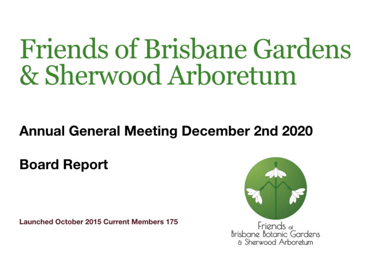 fBBGSA 2020 AGM combined Board report.001