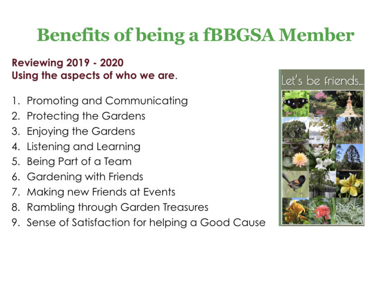 fBBGSA 2020 AGM combined Board report.002