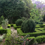 McLay Garden Photo: ©Kim Woods Rabbidge
